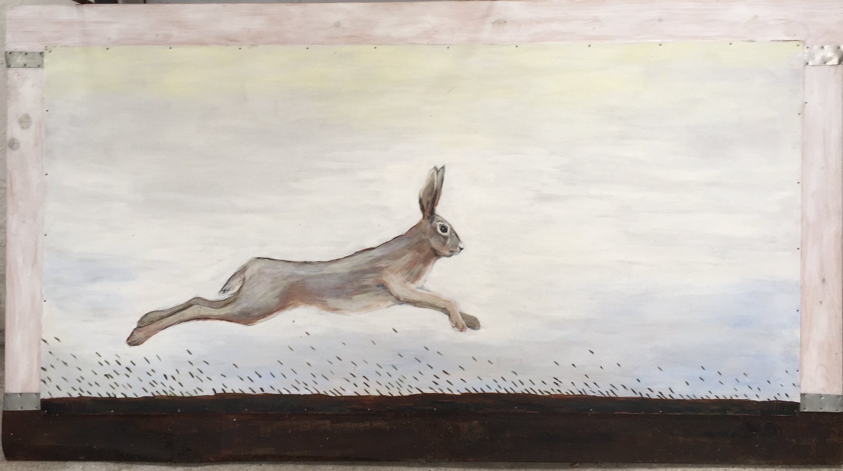 hare, lys